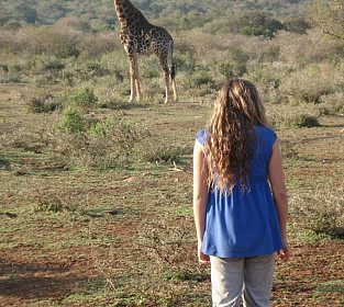 Bush Walking With Giraffes  680x1024